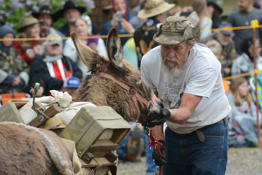 . Charlie Ryon participates in the Donkey Derby for the 35th time, April 28, 2018,  in Paradise, California. (Carin Dorghalli -- Enterprise-Record)