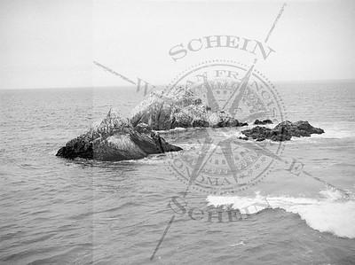SF Icon - Seal Rocks