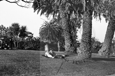 Friends on The Grass by De Young