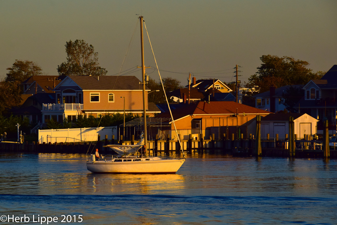Golden Hour Images 10-7-2015-3