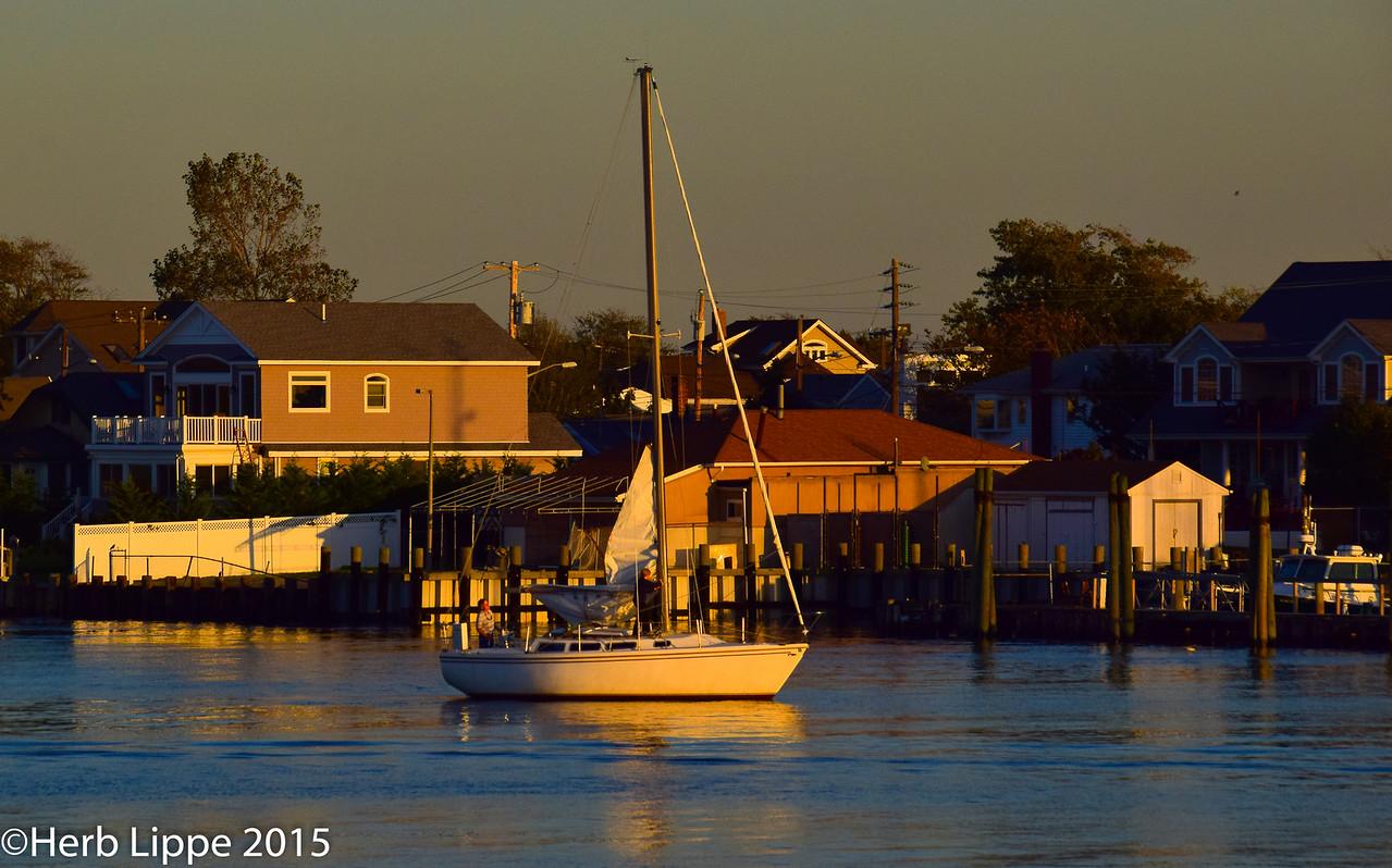 Golden Hour Images 10-7-2015-4