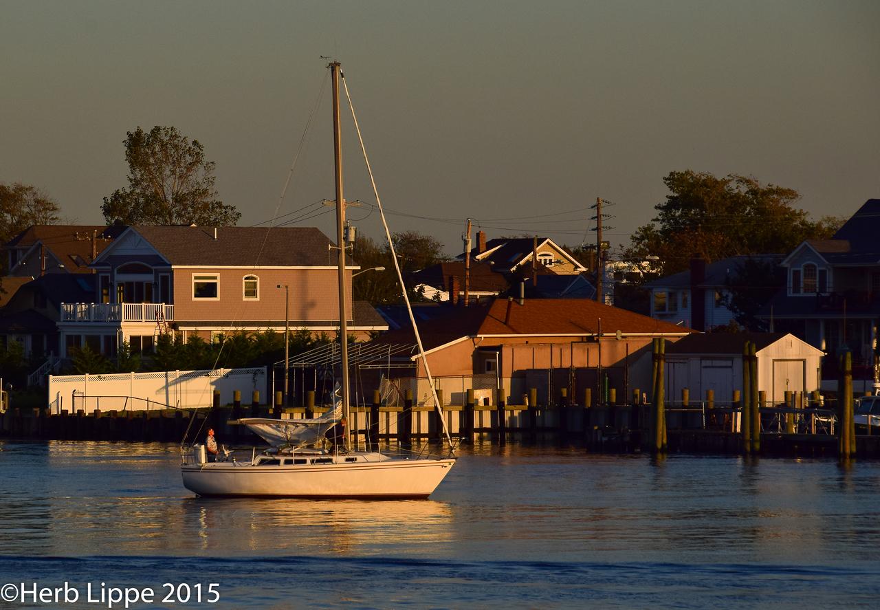 Golden Hour Images 10-7-2015