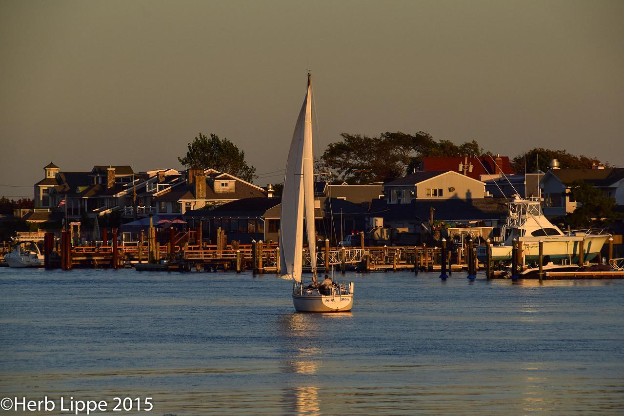 Golden Hour Images 10-7-2015-19