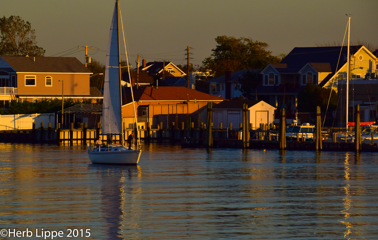 Golden Hour Images 10-7-2015-5