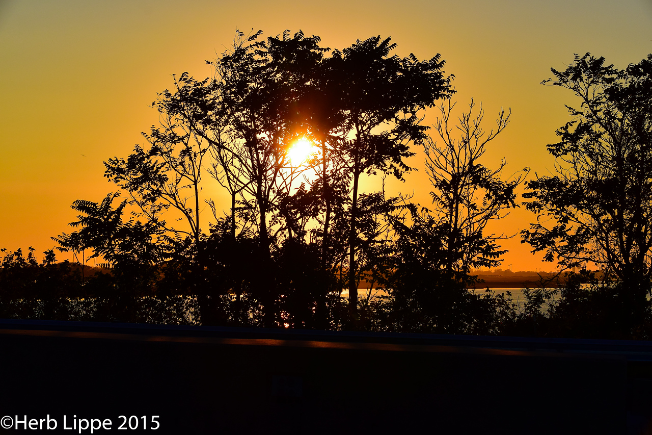 Golden Hour Images 10-7-2015-21