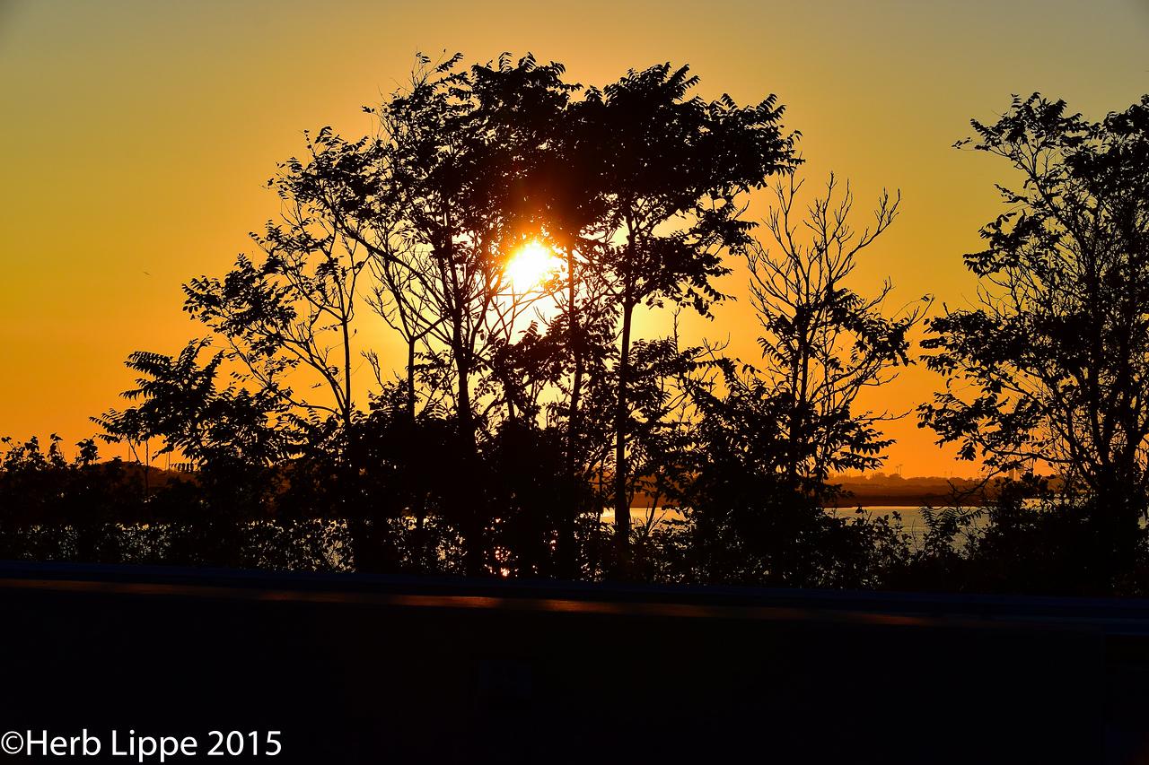 Golden Hour Images 10-7-2015-21