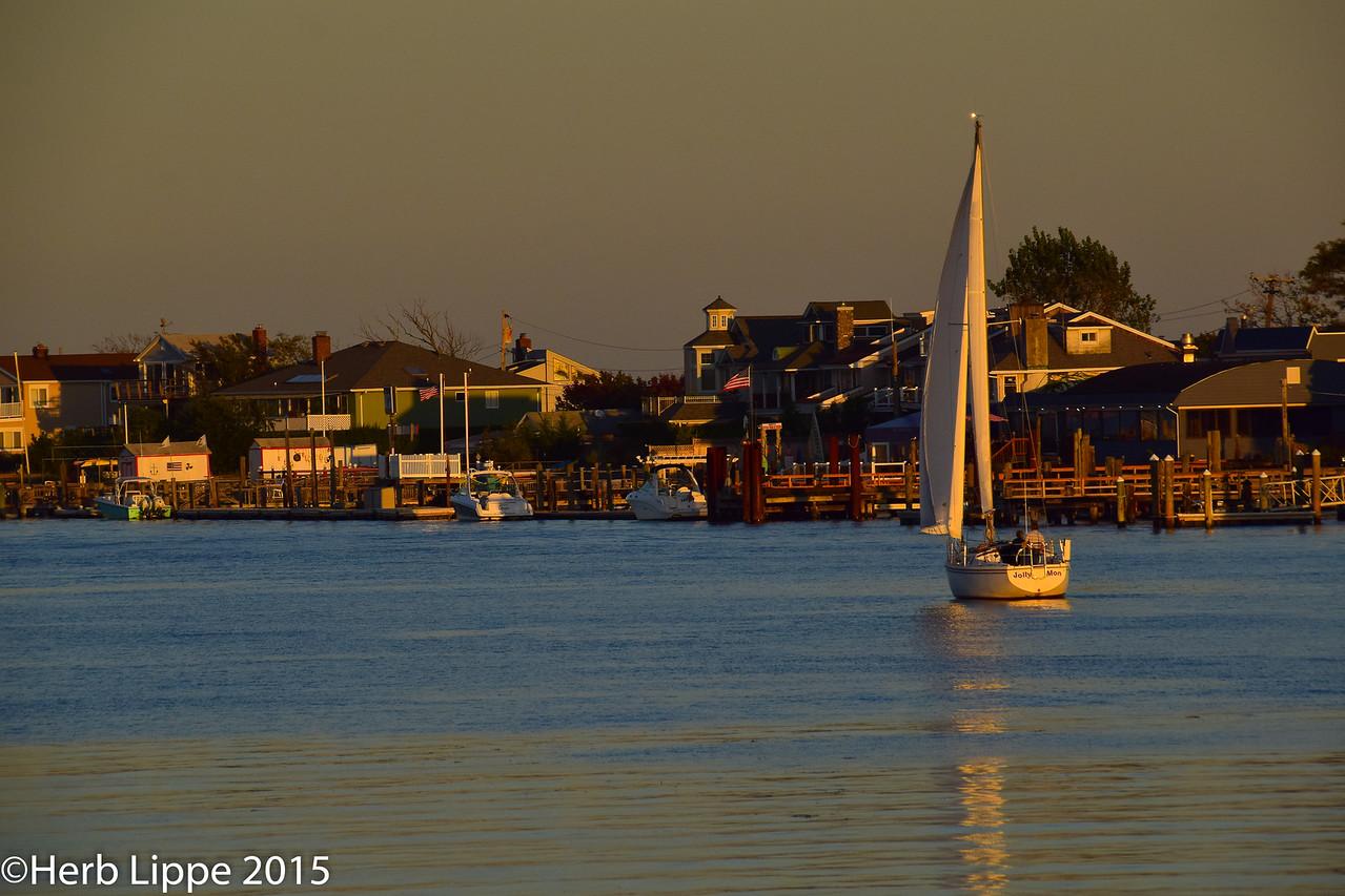 Golden Hour Images 10-7-2015-20
