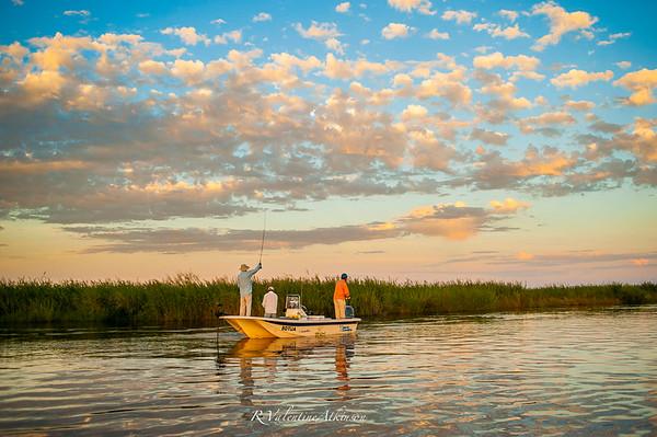Golden Dorado River Cruiser
