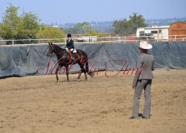 Golden Empire Appaloosa Horse Show