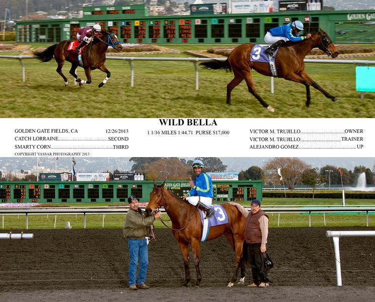WILD BELLA
