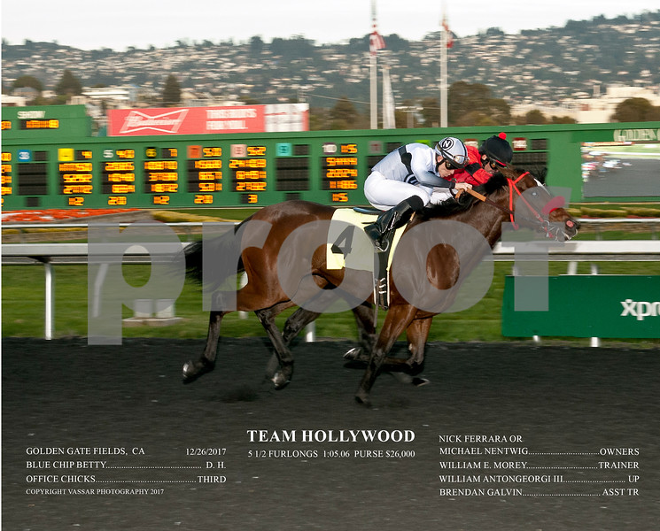 TEAM HOLLYWOOD ACT