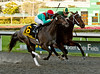 DADDY NOSE BEST WINNER FINISH THREE QUARTER VIEW