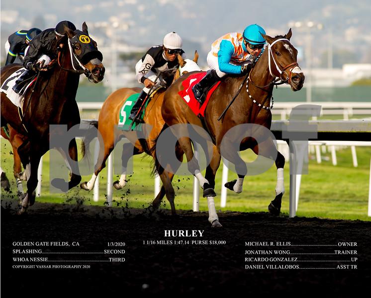 HURLEY ACT