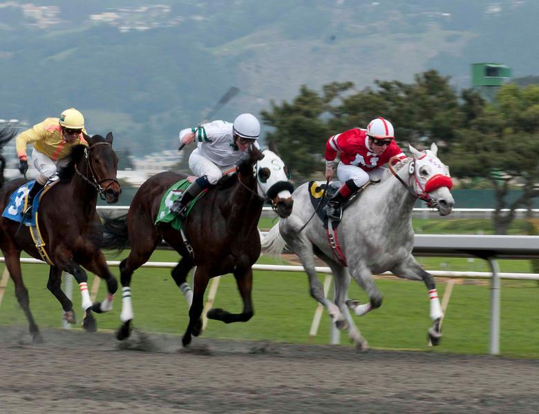RACE 1 SPORTS EDITON ACTION 2