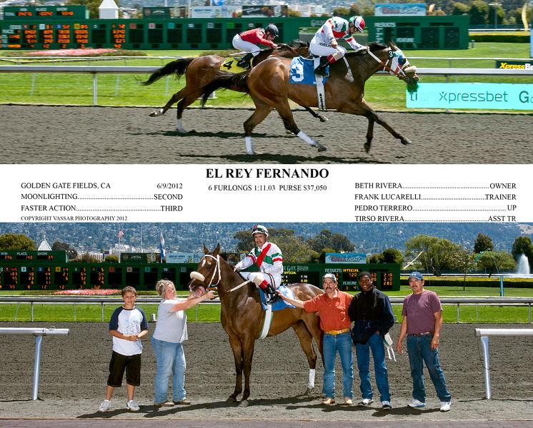EL REY FERNANDO