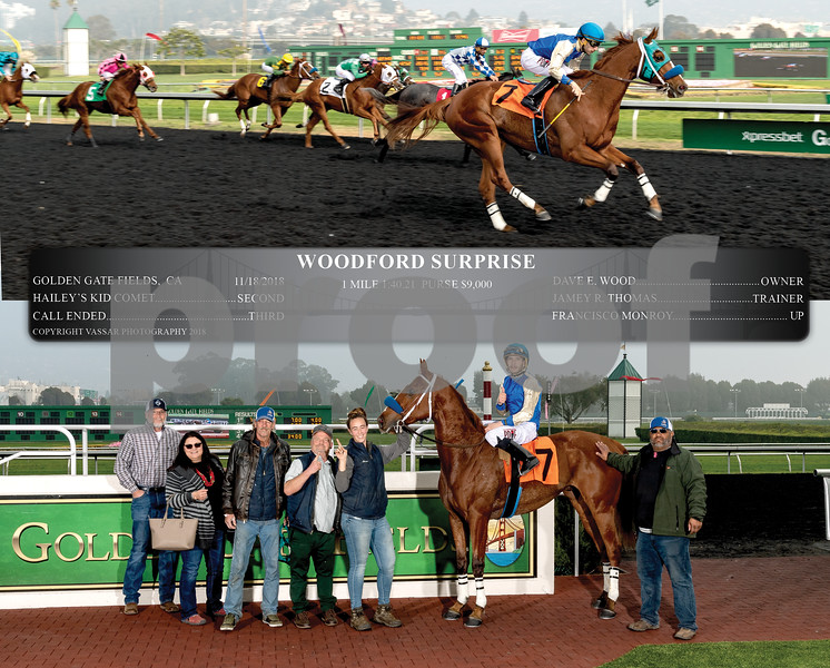 WOODFORD SURPRISE