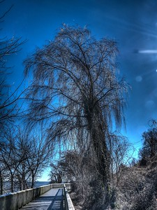 hdr-3771-03-etch