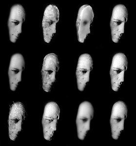 12 créations argentiques (monotypes) 30x40 chacune