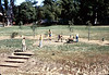 Eagle Scout project creates first picnic area on grounds, 1984. acc2005.001.0449C