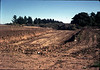 Site grading completed, ready for foundation trenching, October 1981. acc2005.001.0003C