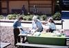 Asphalt Regatta spring fundraiser (potluck w/Diana Mina and Theresa Caccese), 3/17/1990. acc2005.001.1310