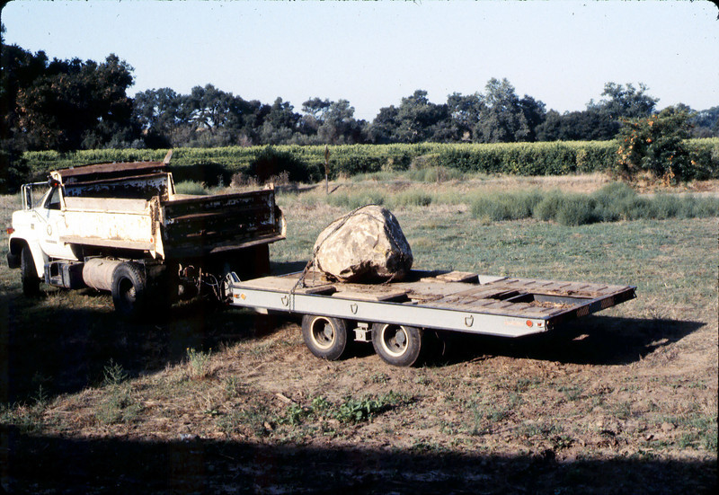 County of Santa Barbara truck and crew deliver rock for Native Sons plaque, 9/1983. acc2005.001.0402