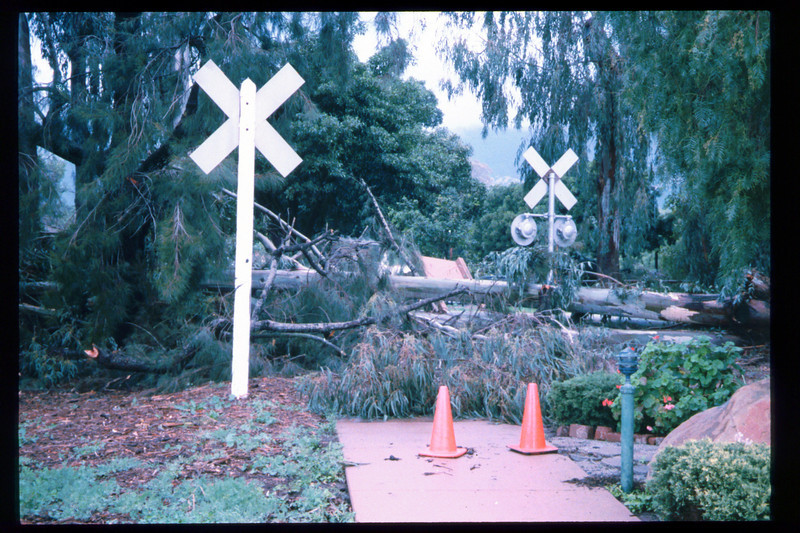 El Nino storms cause trees to fall closing the museum in Feb. 1998. Reported in the museum's Depot Dispatch newsletter, Vol 18, No. 1 (Spring 1998). acc2005.001.2132