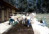 Brownies planting flowers, 1984. acc2005.001.0444