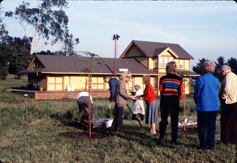 Arbor Day tree planting (Little Gardens Club), 3/1986. acc2005.001.0560