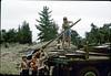 Boy Scout Troop 26 clean-up, 4/1982. acc2005.001.0206