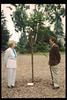 Memorial and tree-dedication honoring late museum benefactor Earl Hill, 8/8/1992. acc2005.001.1783