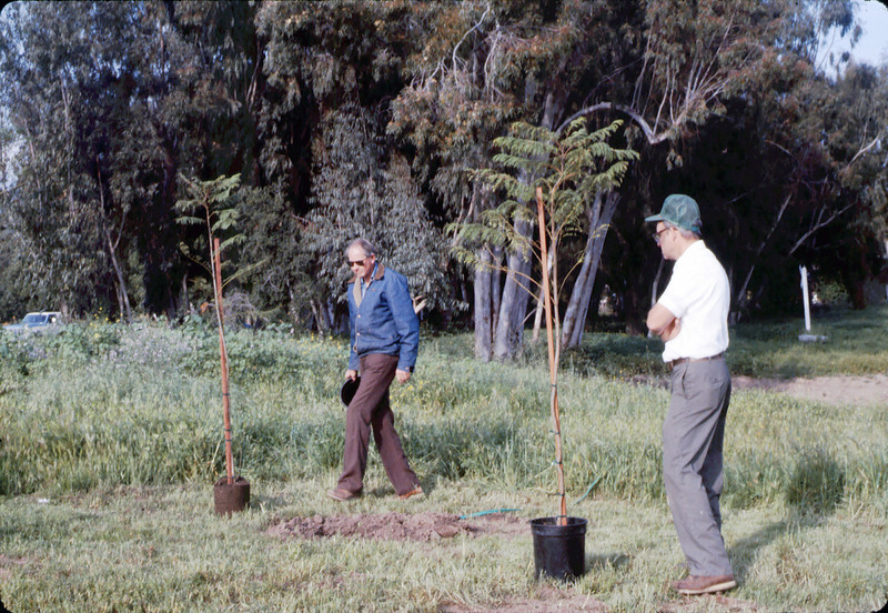 Arbor Day tree planting (Gene Allen and Ralph Moore), 3/1986. acc2005.001.0543