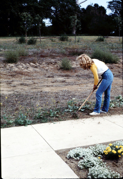 Phyllis Olsen removing weeds around the grounds, ca. 10/1/1983. acc2005.001.0416
