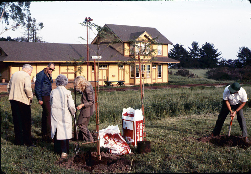 Arbor Day tree planting (Little Gardens Club), 3/1986. acc2005.001.0557