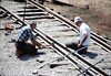 Standard-gauge track laying, 1985. acc2005.001.0542