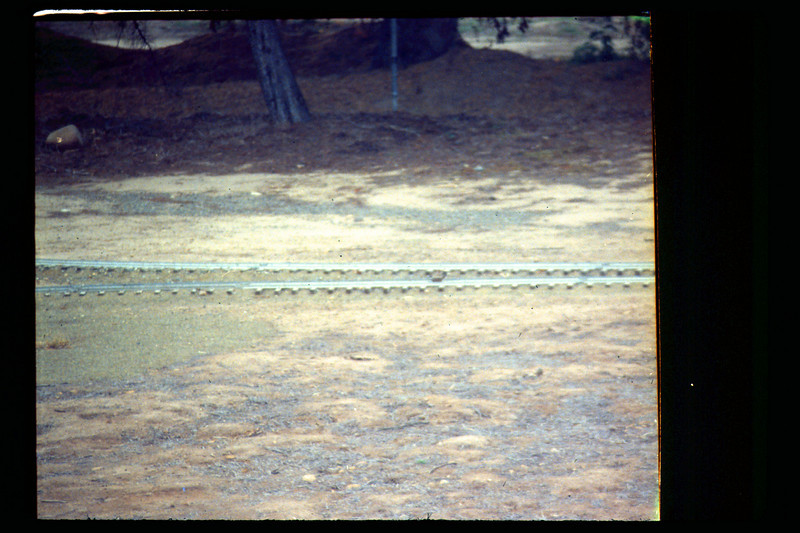 Killdeer eggs on miniature-train tracks, 4/1990. acc2005.001.1326