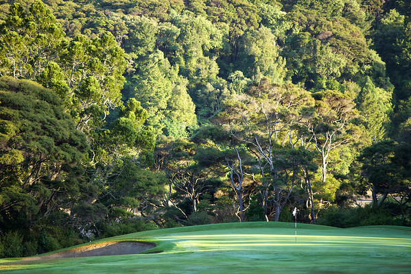 The picturesque 3rd green by Lucas Creek, at North Shore golf course near Auckland, sunrise