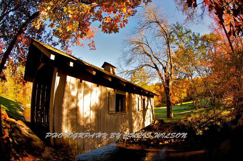 Western NC Fall colors_10-15-12_0080
