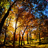Western NC Fall colors_10-15-12_0087