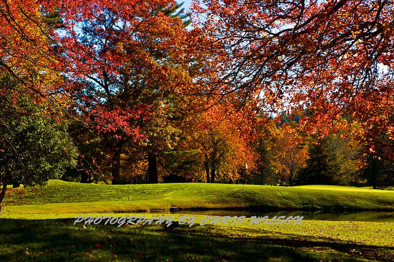 Western NC Fall colors_10-15-12_0086