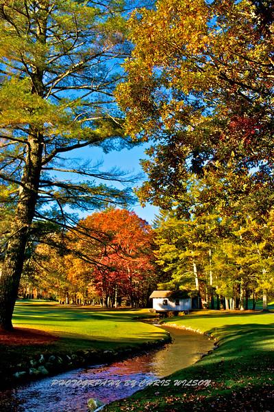 Western NC Fall colors_10-15-12_0079
