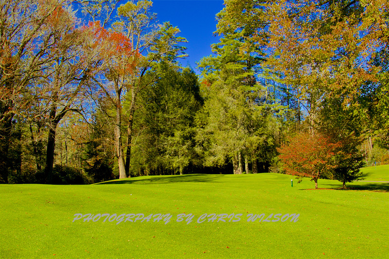 High Hampton GC_17-10-26_039