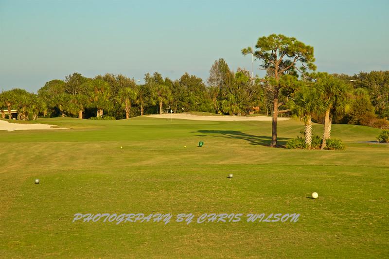 Viera Golf Course  31