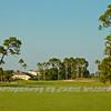 Viera Golf Course  25
