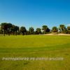 Viera Golf Course  4