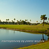Viera Golf Course  26