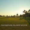 Viera Golf Course  35