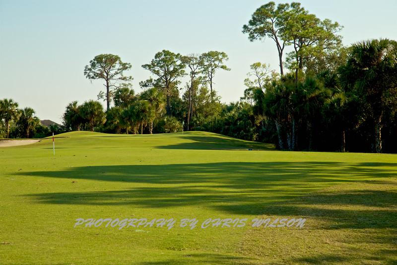 Viera Golf Course  14