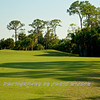 Viera Golf Course  14