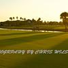 Viera Golf Course  46